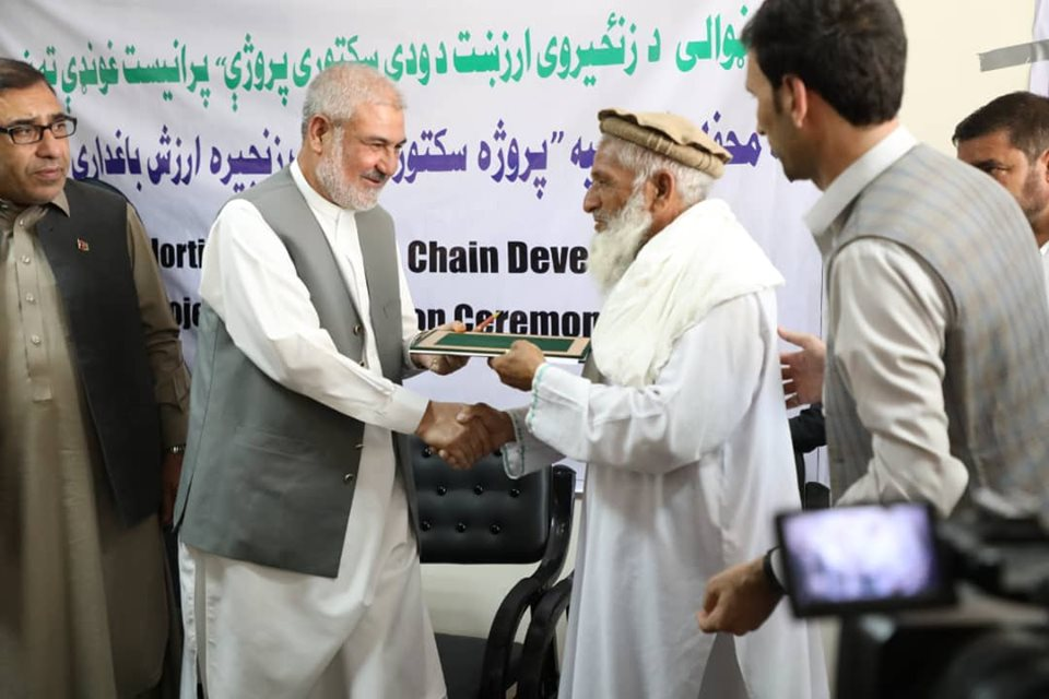 Durrani Signs Contract for Building 230 Greenhouses in Nangarhar